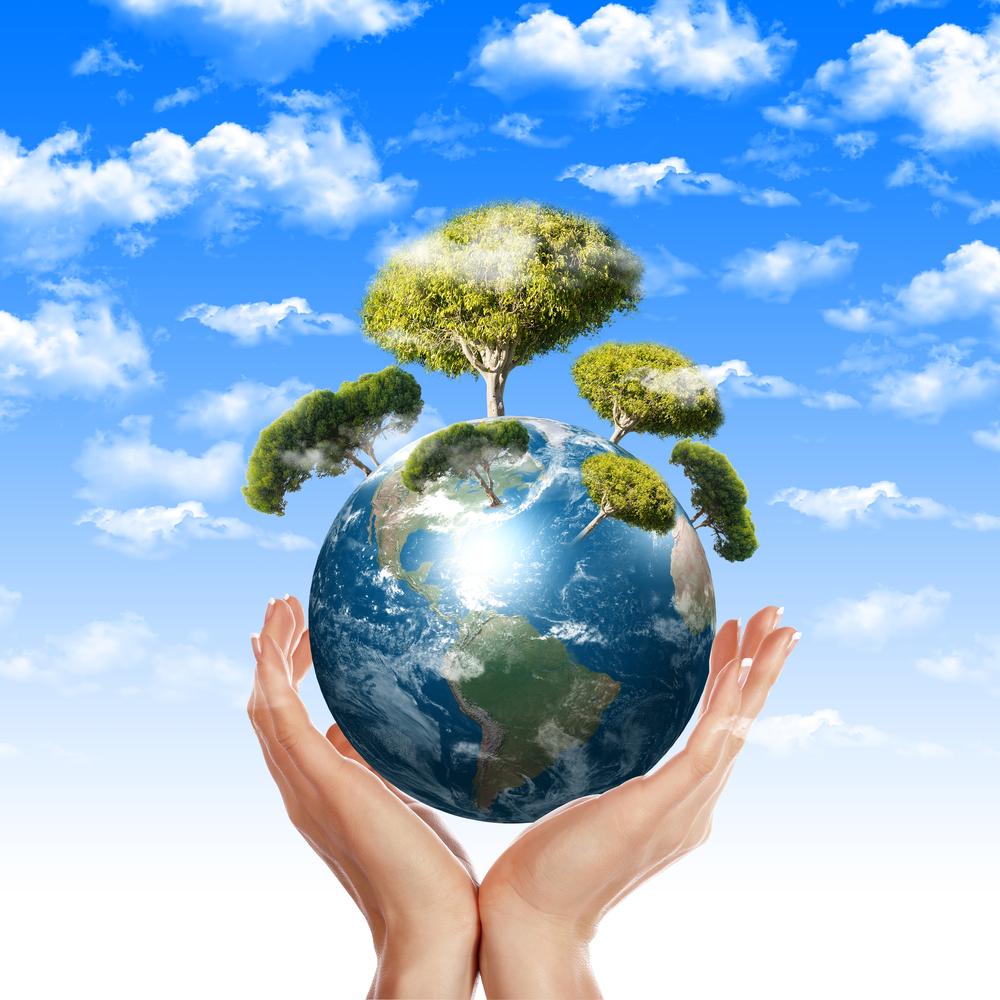 Comment trouver un emploi ou un stage dans l'environnement ...